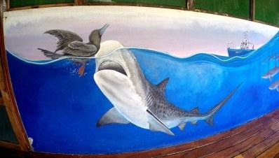 Bild von Tigerhai