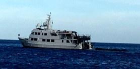 Nautilus Belle Amie