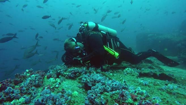 049-divingfamily-gerhard-darwin-galapaogs