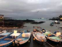 Puerto Ayora am Abend