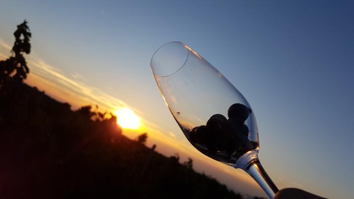 chef-ross-gibbens-clos-pons-sunset