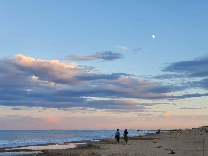 Costa Catalana Playa de la Punta del Fangar