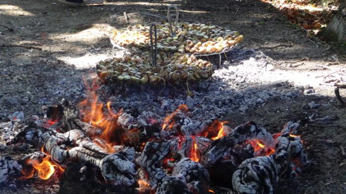 winesafari-Riberach-Divinos-Sabores-caracoles