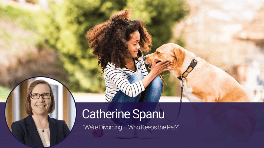 We're Divorcing – Who Keeps the Pet?