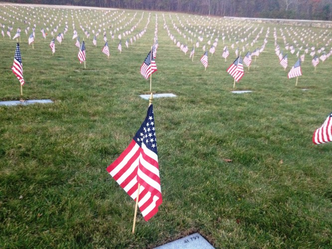 In Honor of Veterans Day
