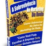 A Sobrevivencia no Marketing de Rede DPE Millionaire Minds Pro Rui Ludovino