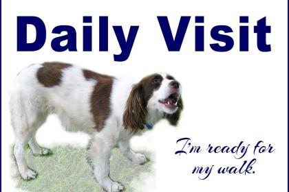 Dixie's Dog Sitting, Pet Watching, House Sitting Services Texas
