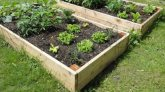 How to Build a Wooden Raised Bed