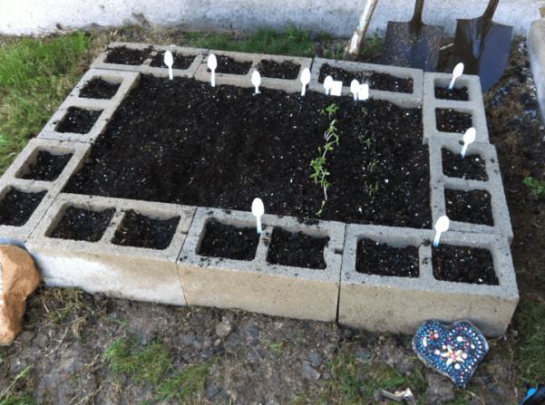 Raised Cinder Block Garden