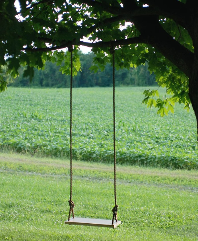 DIY Tree Swing for Your Backyard