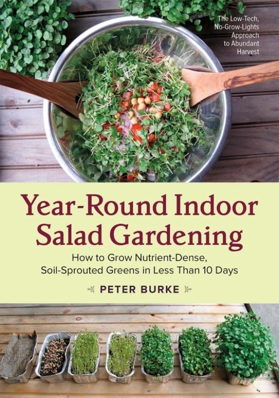 Indoor Salad Garden for Year Round