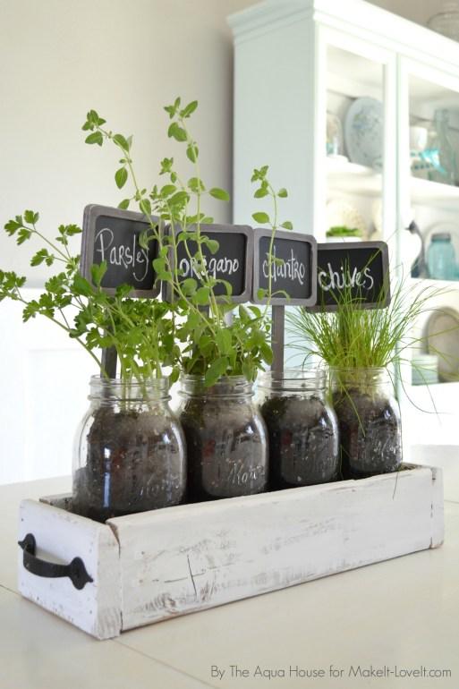 Kitchen Tabletop Herb Garden