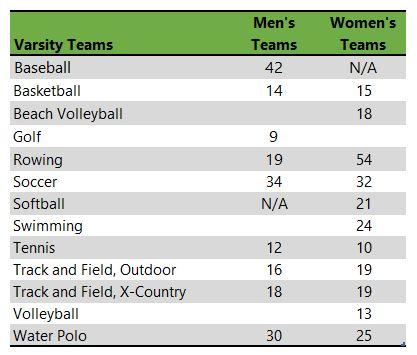Loyola Marymount University athletic teams