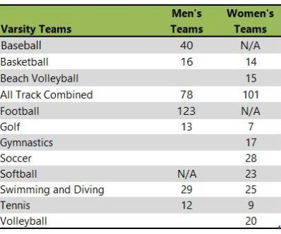 University of Arizona athletic teams