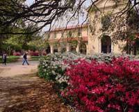 SEC School LSU quad