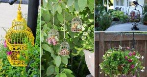 Creative Birdcage Garden Planter Ideas
