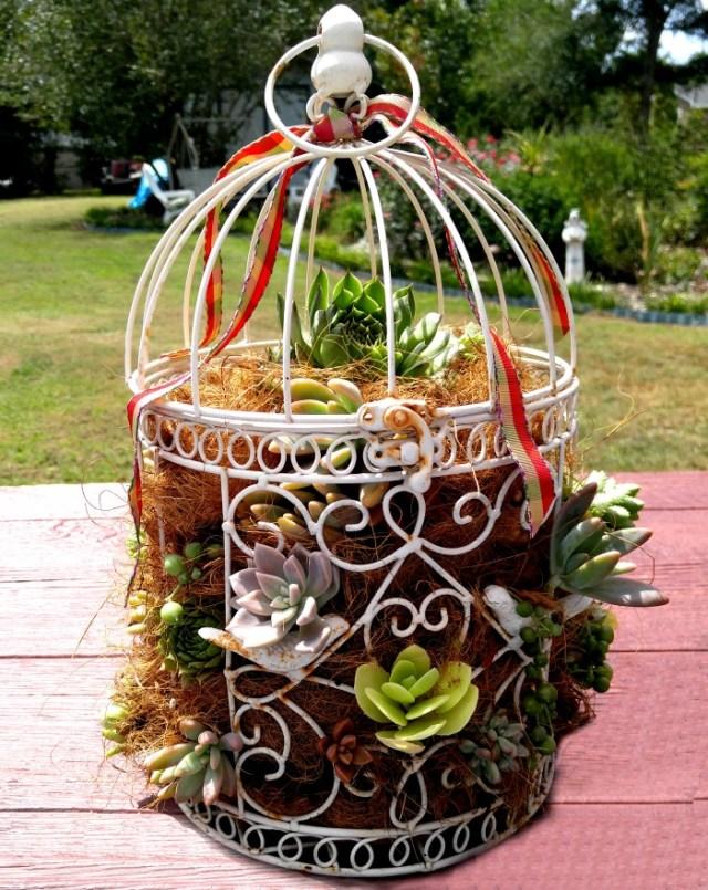 DIY-Birdcage-Planter
