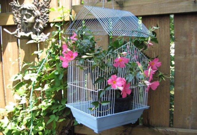 diy-bird-cage-planter
