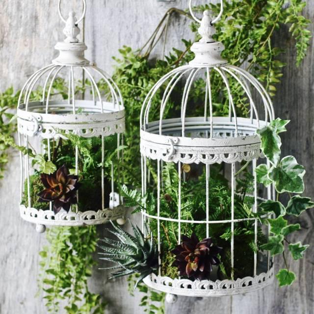White Birdcage Planter
