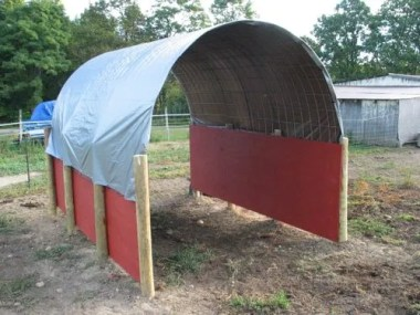 DIY Horse Shelter on a Budget