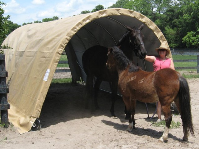 do it yourself horse shelter