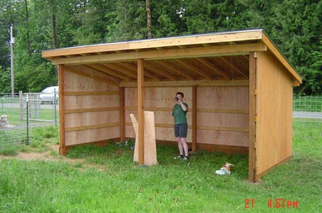 Shelter For Your Horses with 3 Sided