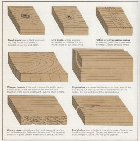 wood defects - points to watch when buying wood