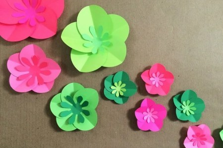How to make easy paper flowers for cards new artist 2018 new artist how to make elegant paper flowers how to make paper flowers craft how to make easy paper flower onwe bioinnovate co how to make easy paper flower easy d mightylinksfo