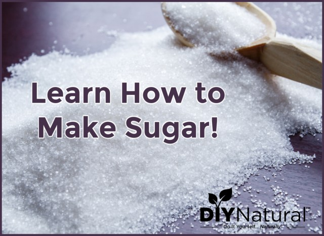 How to Make Sugar: Learn How to Make it And What Veggies Work Best