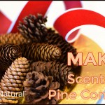 Scented Pine Cones A Perfect Tutorial For Holiday Decor And Potpourri