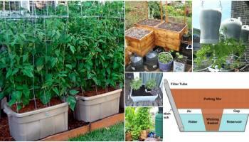 Home Garden Irrigation System 27