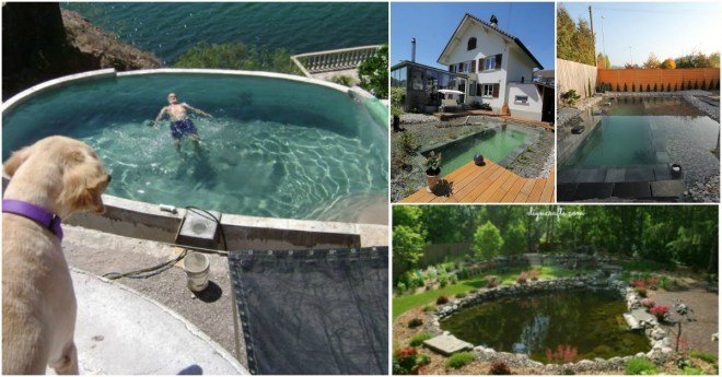 6 simple diy inground swimming pool ideas that will save