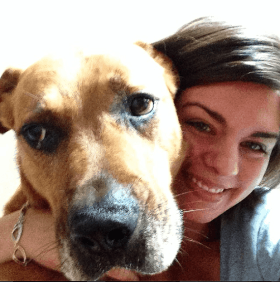 A Christmas Letter to my dog via DIY Passion