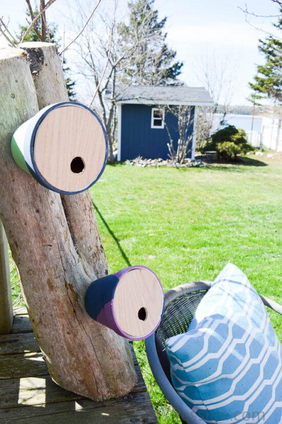Cute little Terracotta pot birdhouses