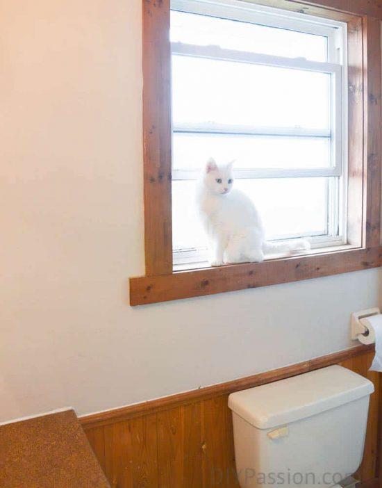 Master Bathroom Before Oak Wainscoting Window