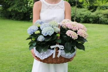 Blommor som gåva