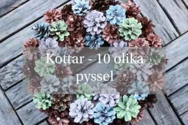 Kottar - 10 olika pyssel