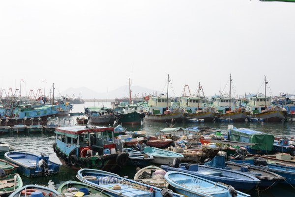 Cheung Chau Fish Fleet