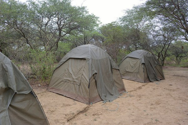 Typical Camping Tent in Kruger