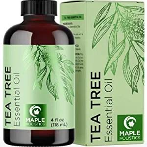 Tea Tree Oil (Image taken from Amazon)