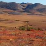 A fragile land, and tough