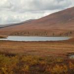 Tundra lake, Yukon