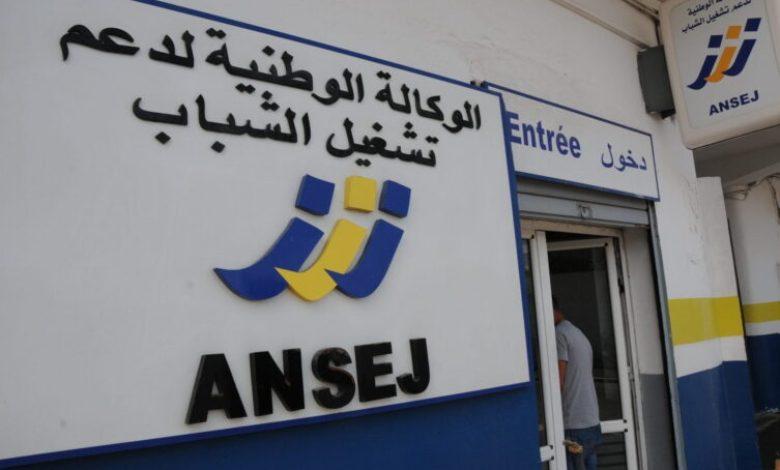 صورة إمكانية إنشاء الجالية لمؤسسة مصغرة في الجزائر عن بُعد