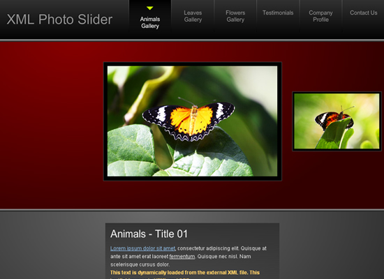 20 Free Flash Templates With Source File 10