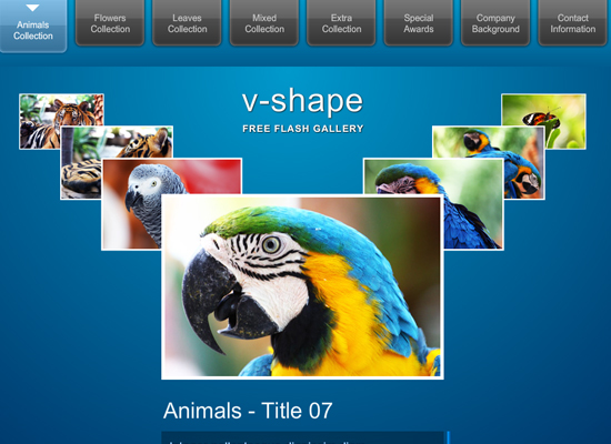 20 Free Flash Templates With Source File 4