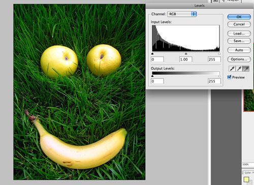 10 Beginners Tutorials to Start With Photoshop 8