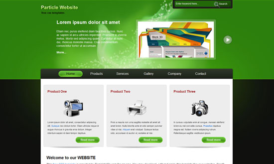 40 High Quality Free XHTML/CSS Web Template for Developers 10