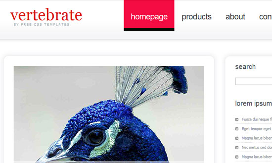 40 High Quality Free XHTML/CSS Web Template for Developers 26