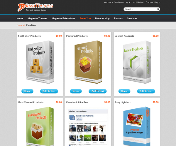 Websites to Download Free Magento Templates 2