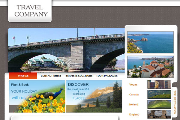 20 Best Free Travel Website Template 5